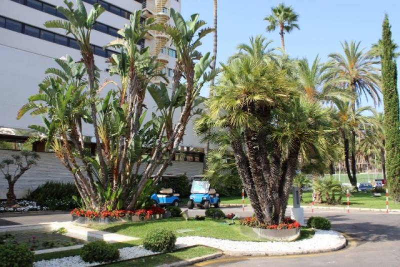 Landscaping project in Marbella - Melia Don Pepe